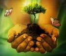 Día Mundial de la Tierra 2014: Ciudades Verdes
