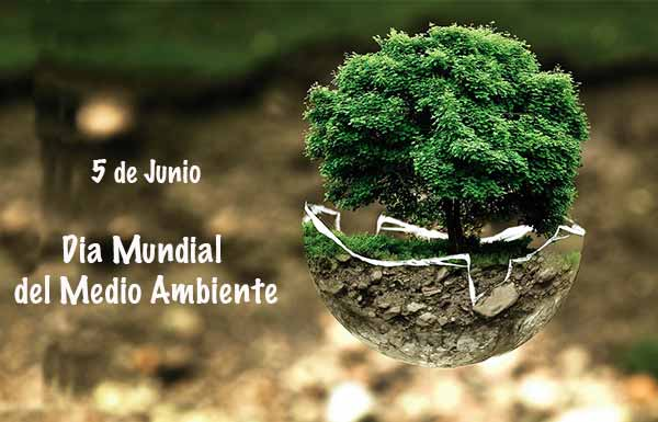 Sueños para el Día del Medio Ambiente
